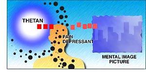 Lieky proti bolesti obmedzujú schopnosť thetana vytvárať mentálne obrazové záznamy.