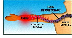 Bránia tiež elektrickej vodivosti nervových dráh.